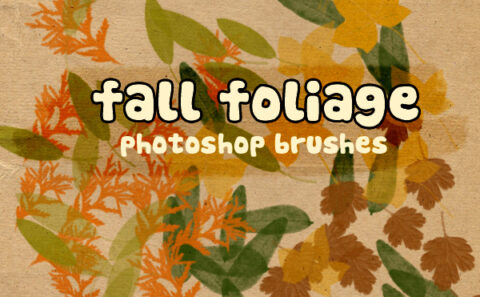fall foliage photoshop brushes